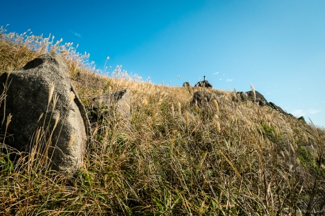 Making the climb up to the peak through the tall grass.