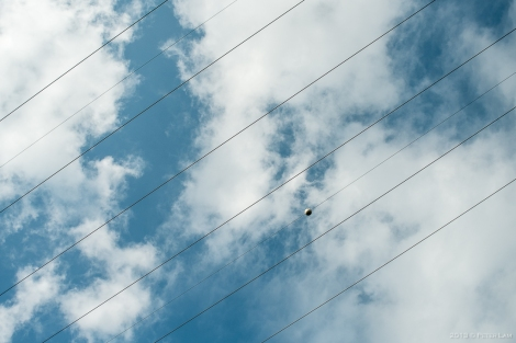Rare blue sky!