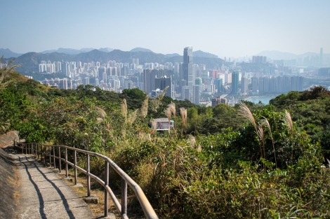 Great views of Tsuen Wan down below.
