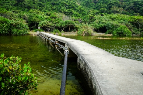 Stream Bridge at Sai Wan Bay