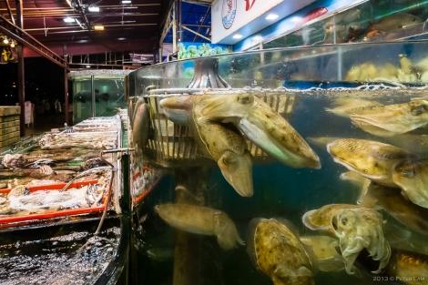 Sai Kung seafood restaurant