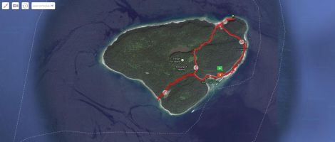 The hiking trails of Flower Pot Island.
