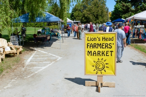 Lion's Head farmers market