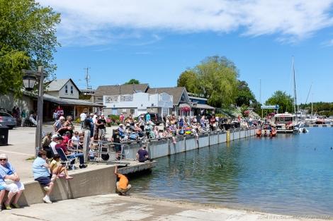 Tobermory festival harbour image
