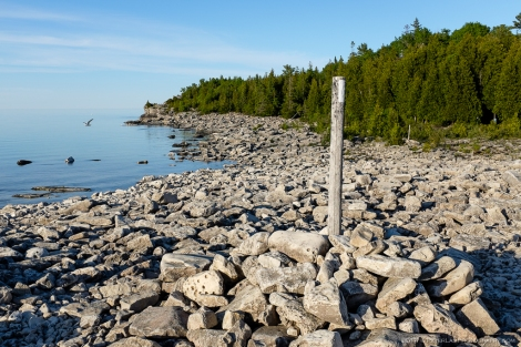 bruce trail marker image