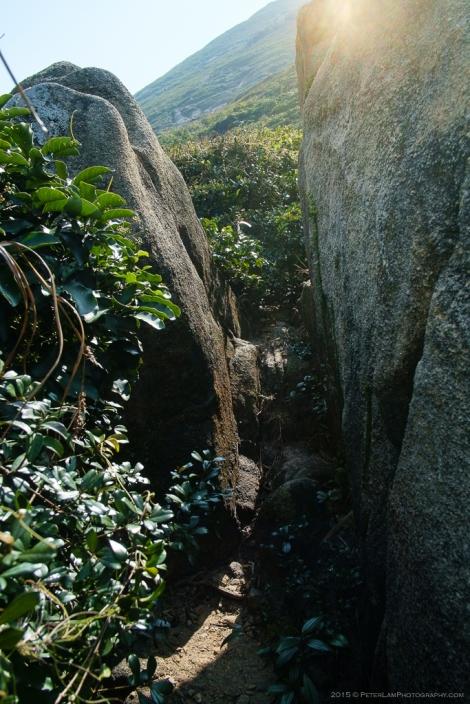 Cape D'Aguilar-4516