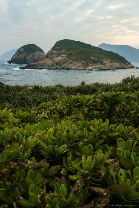 Cape D'Aguilar-4581