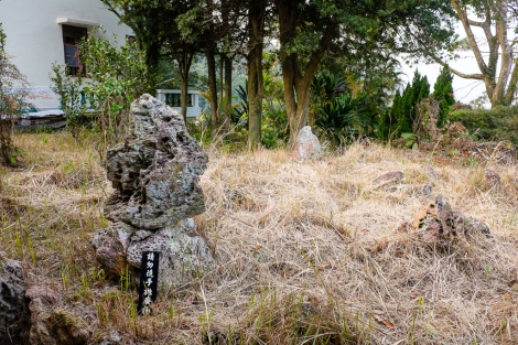 Lantau Trail-1003948
