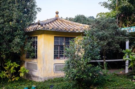 Lung Tsai Ng Yuen