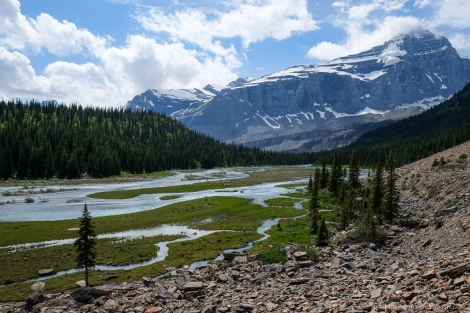 Berg Lake Rearguard