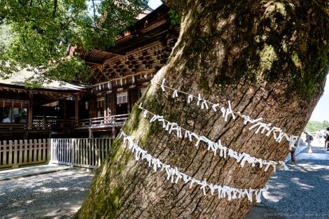 Konpira Temple