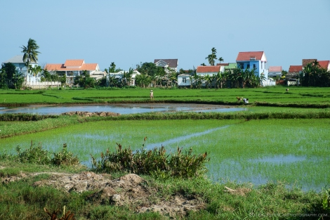 Hoi An Bicycle Tour
