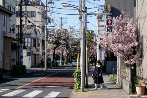 Toden Arakawa Streetcar